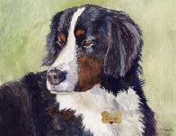 Watercolor portrait of Burmese Mt. dog